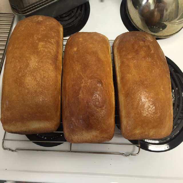 Mom's Bread Recipe  – created on the CHEF CHEF app for iOS